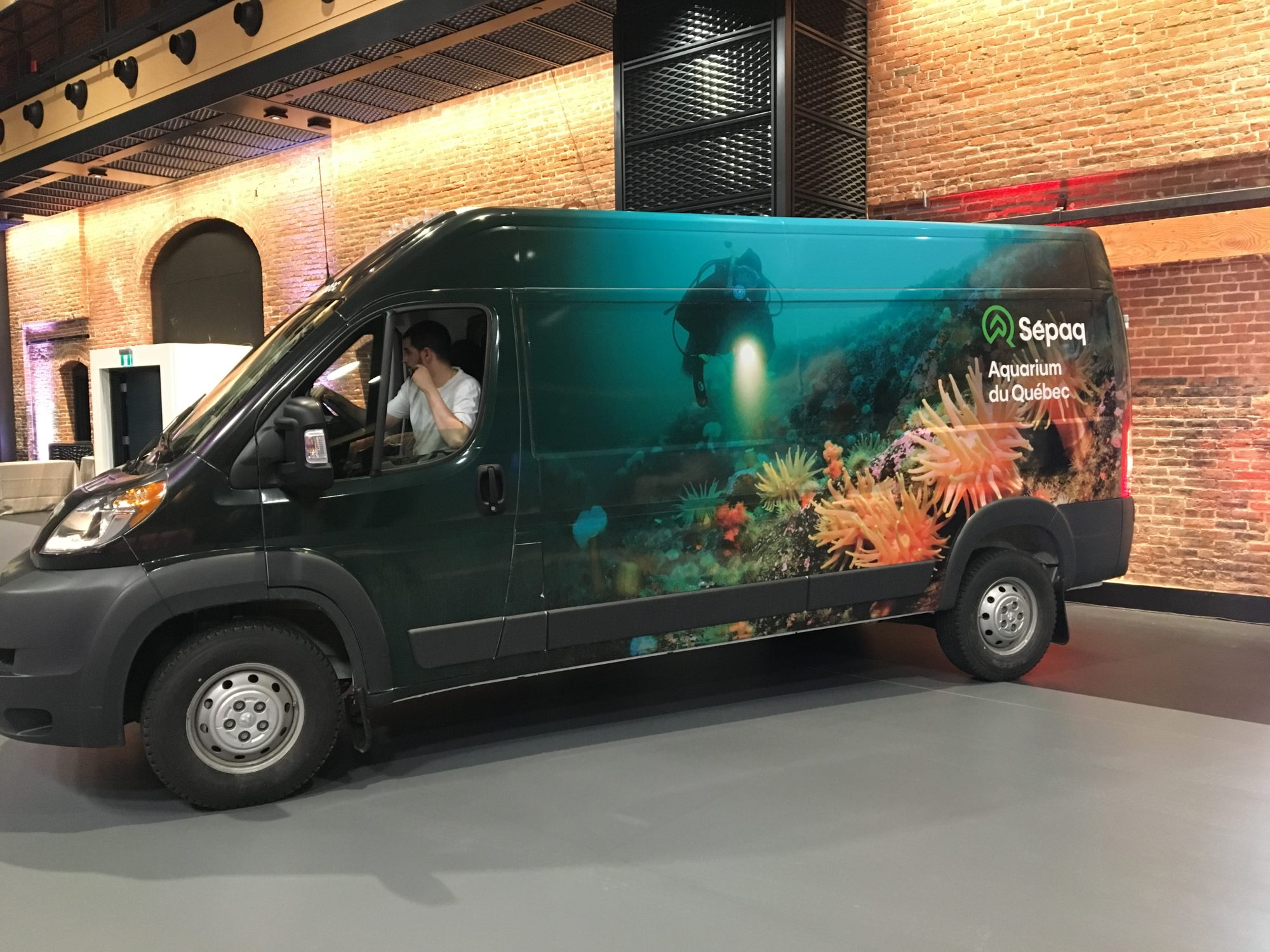 Auto_Aquarium